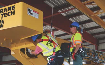 fall protection while inspecting cranes